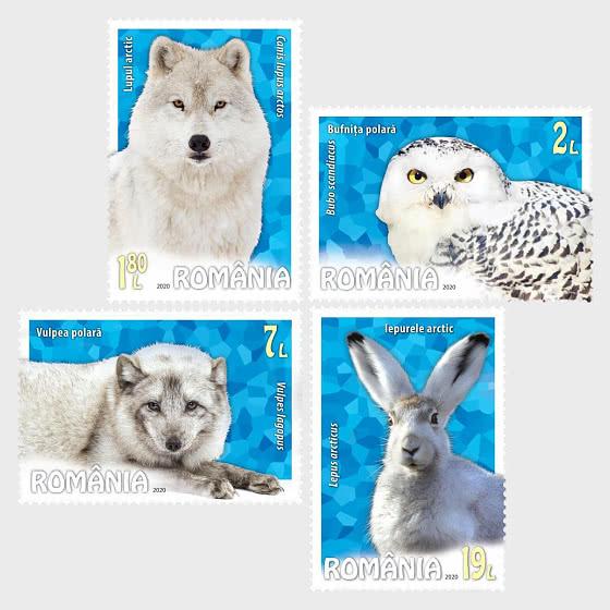 Polar - Fauna - Set