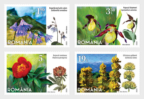 Protected Flowers From Romania - Set