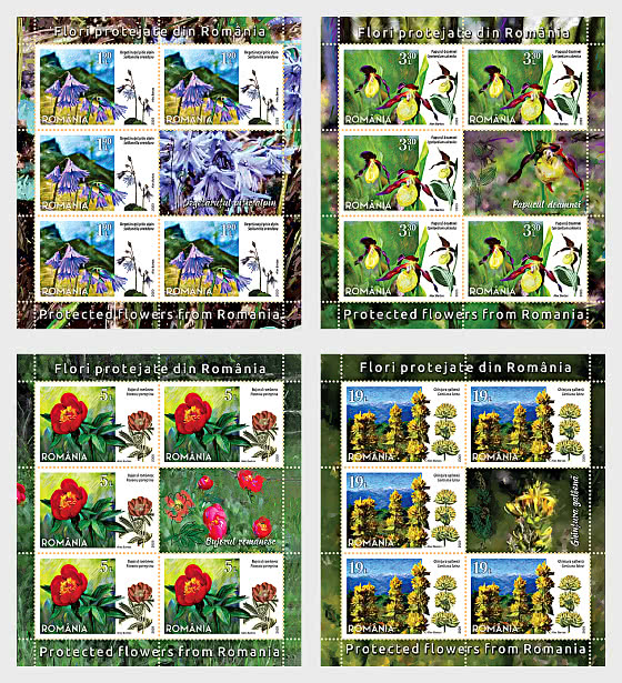 Protected Flowers From Romania - Sheet x 5 stamps + 1 labels - Sheetlets