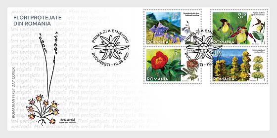 Flores Protegidas De Rumania - Sobre de Primer Dia