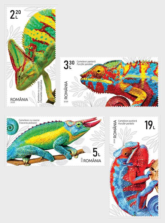 Chameleons - Set