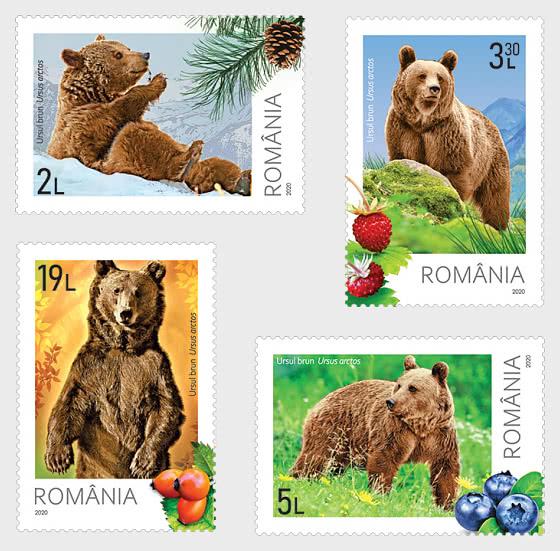 Bears - Set