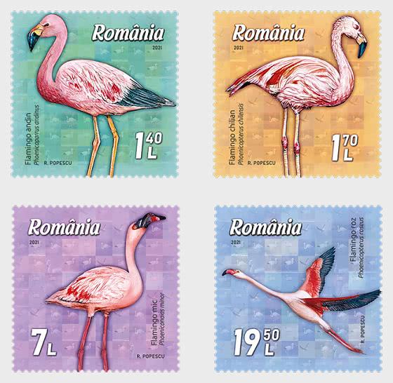 Flamingo - Set