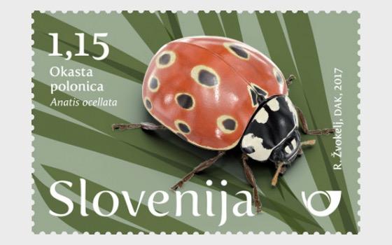 Fauna - Ladybird - Eyed Ladybird - Set