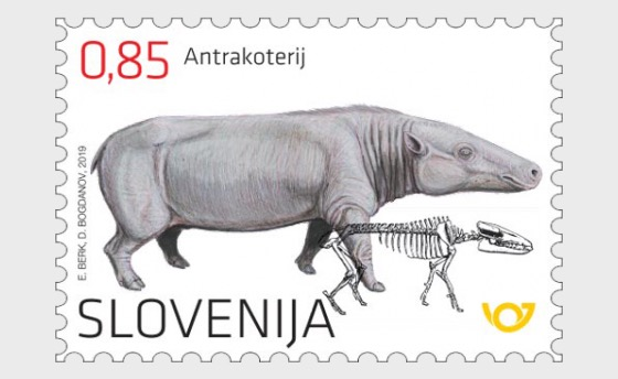 The Anthracothere - An Oligocene Mammal from the Zasavje Region - Set