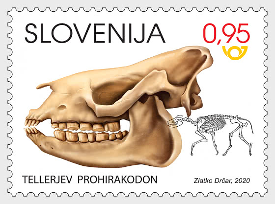 Fossil Mammals of Slovenia - Set