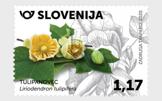 Flora 2020 - Serie
