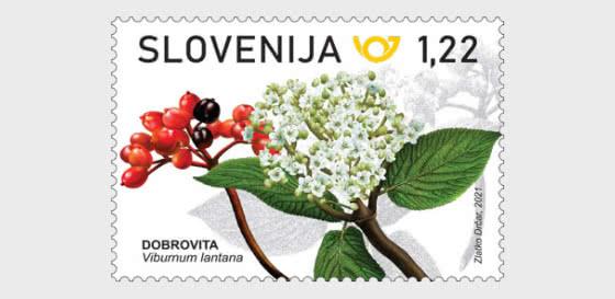 Flora - Series