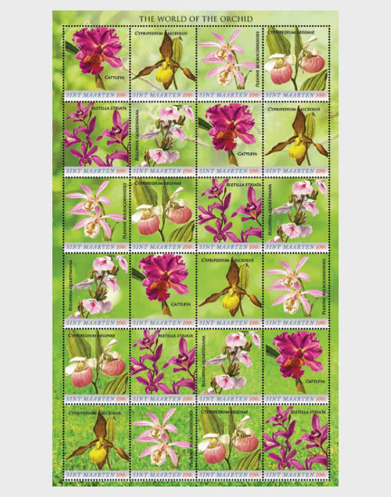 Orchids - Full sheets