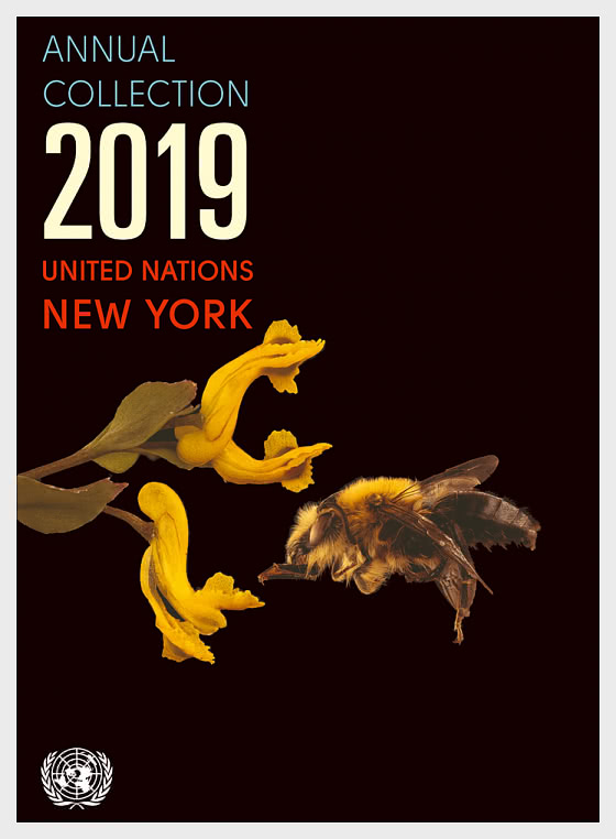 Annual Collection Folder 2019 - (New York) - Year Collections