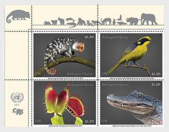 (New York) Endangered Species 2021 - Serie